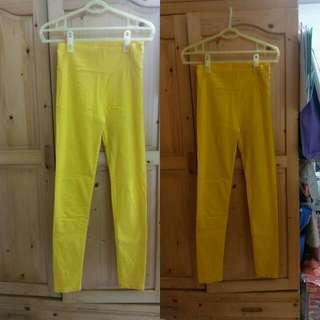 全新 色褲 緊身褲 內搭褲 彈性 黃色
