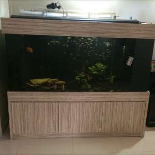 Cabinet Tank IOUS 5Ftx2.5ftx2.5ft Low profile N30 Cabinet tank