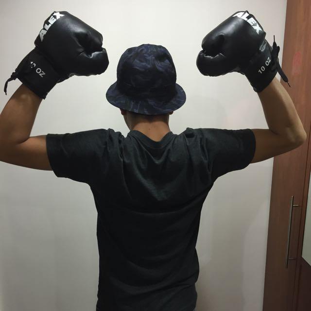 Alex拳擊手套10OZ+訓練用手靶