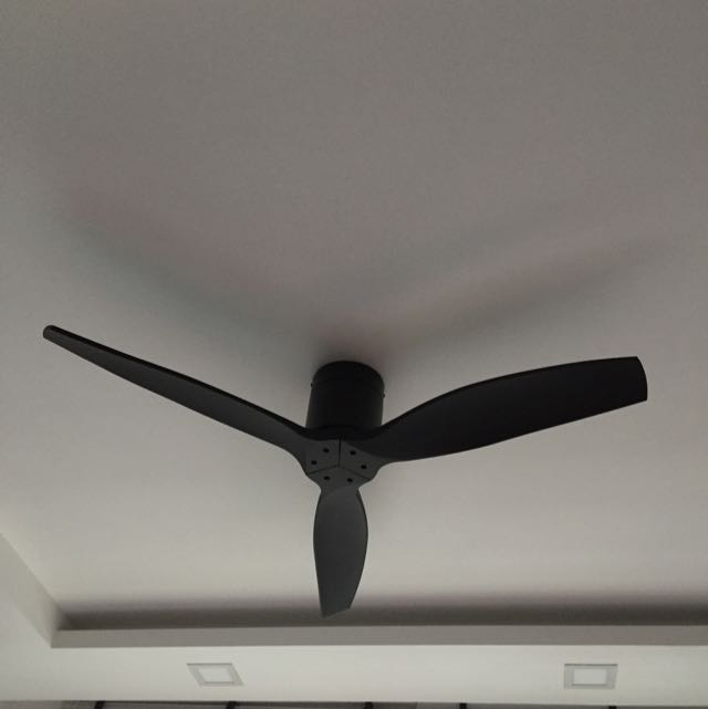 Spin fan black colour designer dc fan esplada home furniture on photo photo photo photo photo aloadofball Images