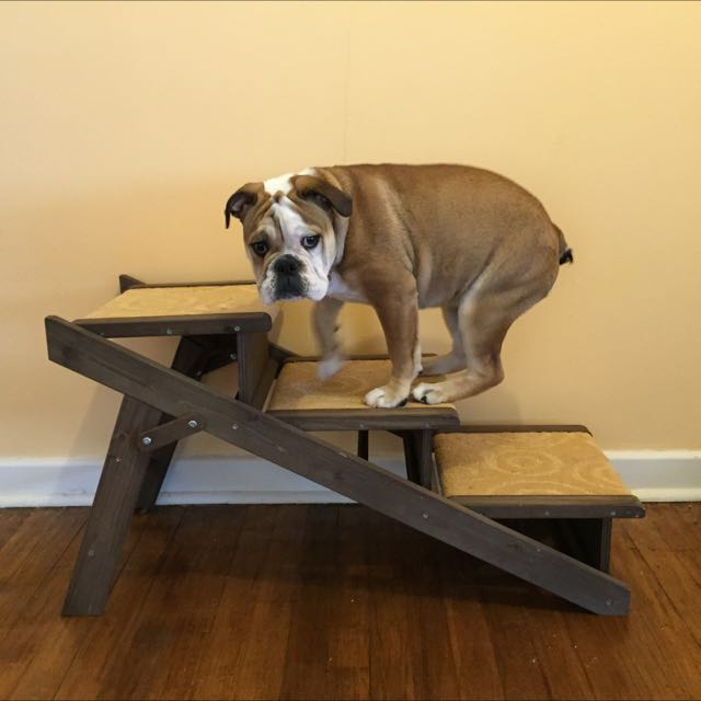 Pet Stairs!