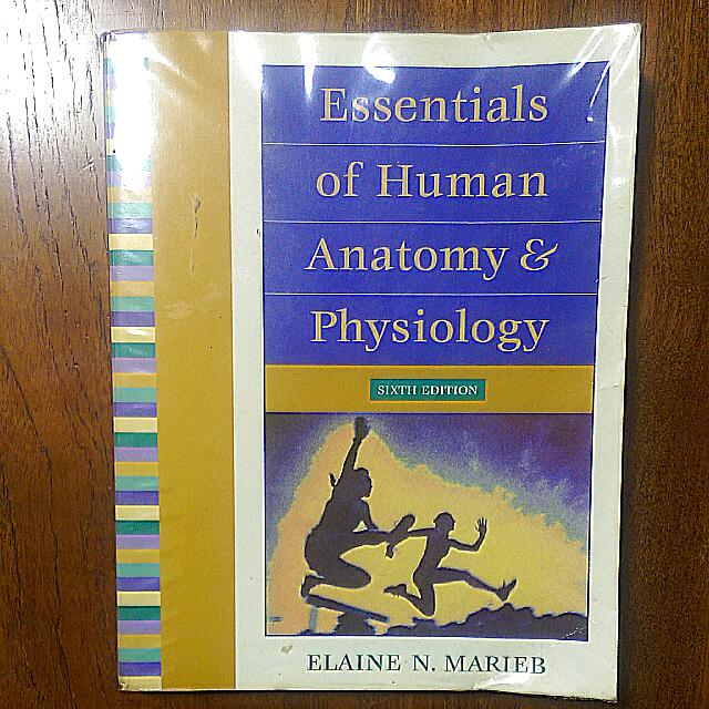 Essentials Of Human Anatomy Physiology Sixth Edition By Elaine N
