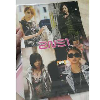 2NE1 Unofficial Clear File