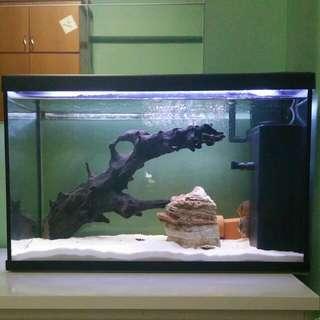Selling ECO 60 Aquarium Tank