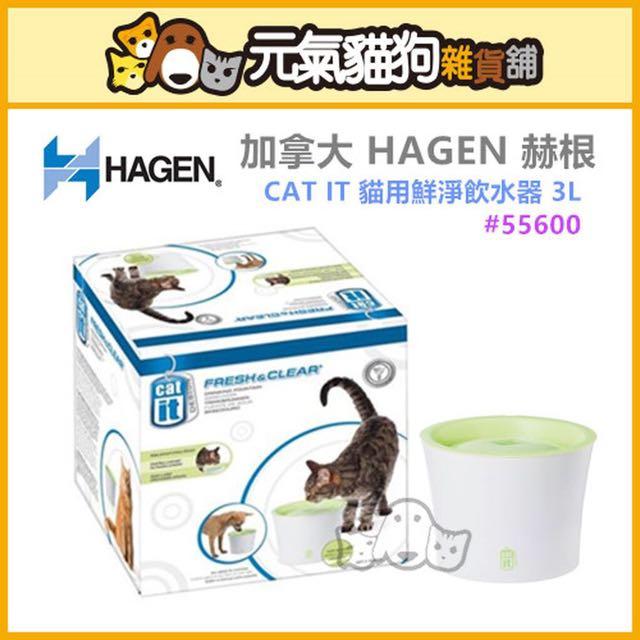 ∞元氣貓狗∞ 加拿大 HAGEN 赫根 CAT IT 貓用鮮淨 飲水器*3L*#55600 自動飲水器 流動飲水機