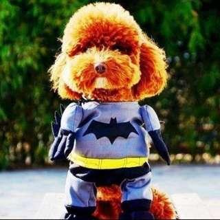 *Sale* Pet Costume - Batman