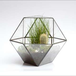 BACK IN STOCK! - Industrial Geometric Hexagon Glass Planter!