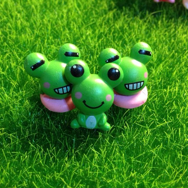 Couple Frog Terrarium Diy Miniature Design Craft On Carousell