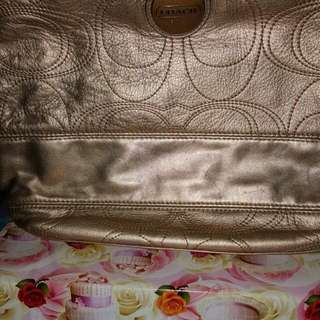 Coach Handbag (Original)