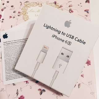 Lightning USB Cable 1m iPhone 傳輸線 Apple 原廠 充電線