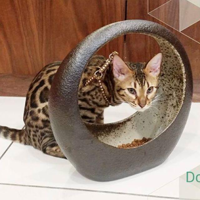 貓奴 飼料盆 仿石 陶器 寵物
