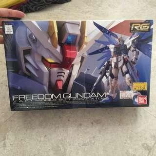 Freedom Gundam (real grade) 05