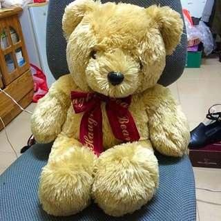 超質感 泰迪熊
