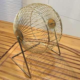 寵物鼠跑步球籠