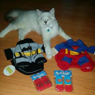 Pet Superhero Costume