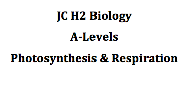 h biology photosynthesis  respiration notes and essay questions  photo photo photo