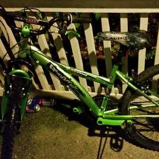 Evolution boy's mountain bike