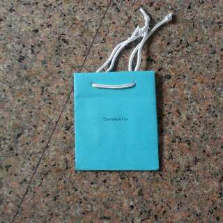 Brand New Tiffany & Co. paper bag.