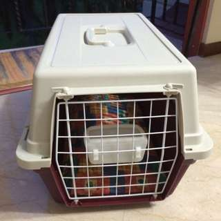 Pet Air Transport Box/ Pet Cage/ Dog Kennel