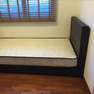 New Super Single BedFrame & Mattress