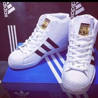 💕9.5成新💕adidas superstar金標 愛迪達 內增高款 球鞋 鞋子