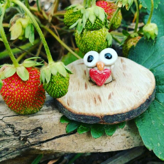 Strawberry Owl. . Made With So Much Love By Our Potter Andrew. Handmade By Local Artist. Thank You For Purchasing Local Handmade Product.