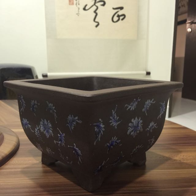 Bonsai Zisha Pot