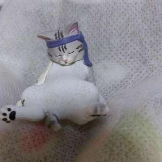 下午時光貓咪