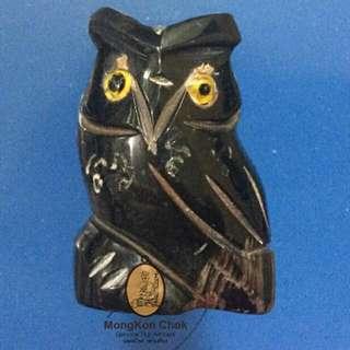 Nok Teuk Teuk (Owl)