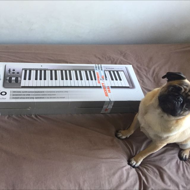 M-Audio 49 Notes Synth Action Keyboard Controller