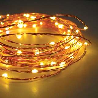 10m Copper Christmas Lights(used once)