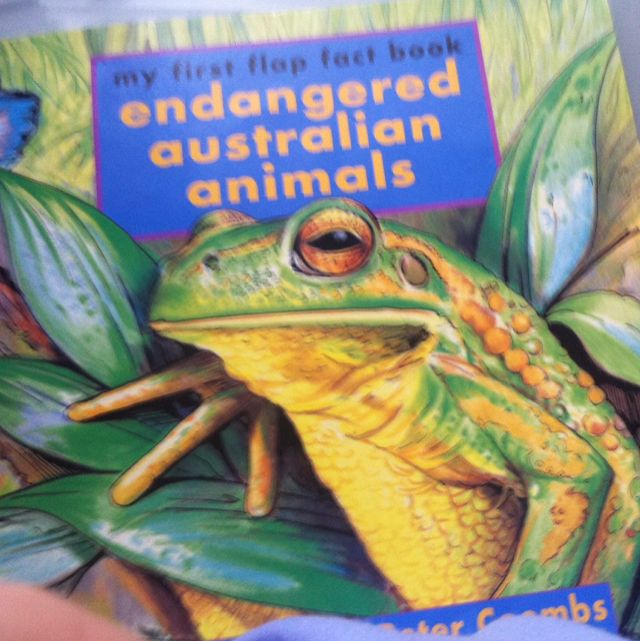 Endangered Australian Animals