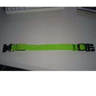 Small Green Nylon LED Pet Collar