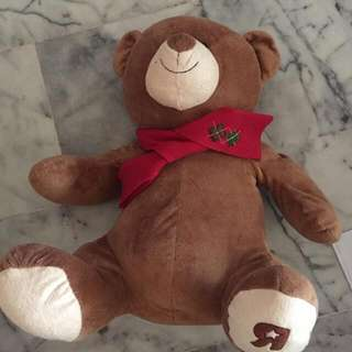 Big Bear Plush Soft Toy