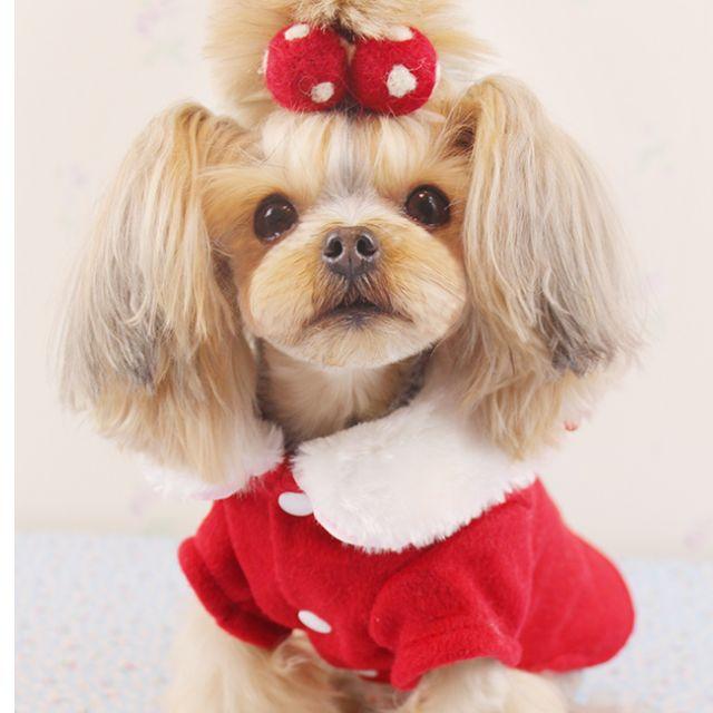 <預購>女神範~新年裝毛呢寵物大衣