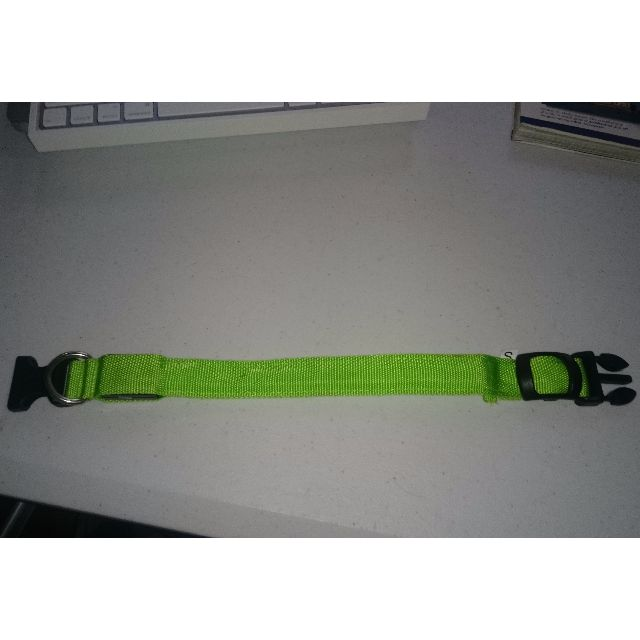 Large Green Nylon LED Pet Collar