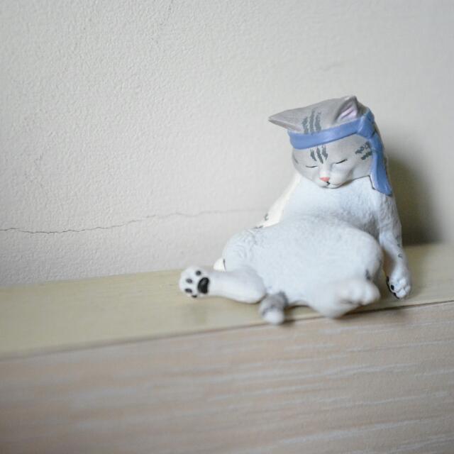 動物的下班時光 貓咪 扭蛋 轉蛋