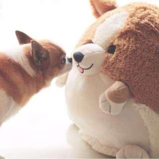 IME愛我 柯基犬玩偶 球形抱枕可愛公仔靠枕