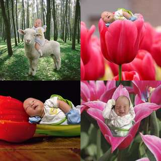 Themed Baby Photo Services