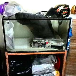 Single Fish Tank --- 3 Ft with Metal Stand