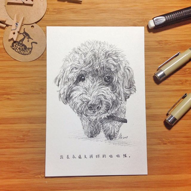 「代針筆」客製寵物插畫