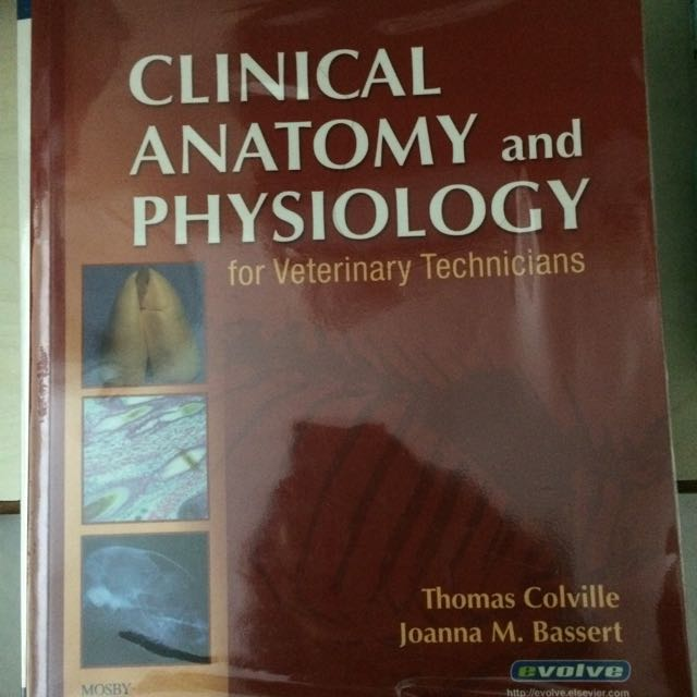Perfect Clinical Anatomy And Physiology For Veterinary Technicians ...