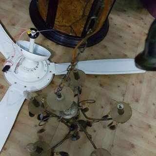 吊扇 吊燈