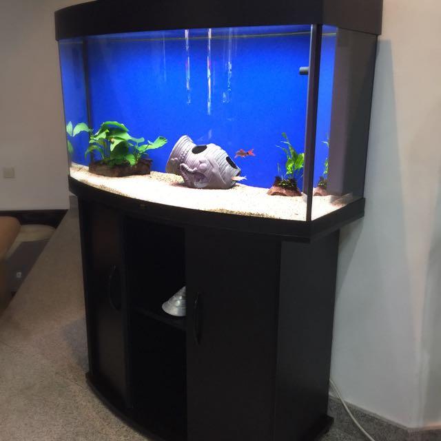 reserved juwel vision 180 fish aquarium pet supplies on carousell. Black Bedroom Furniture Sets. Home Design Ideas
