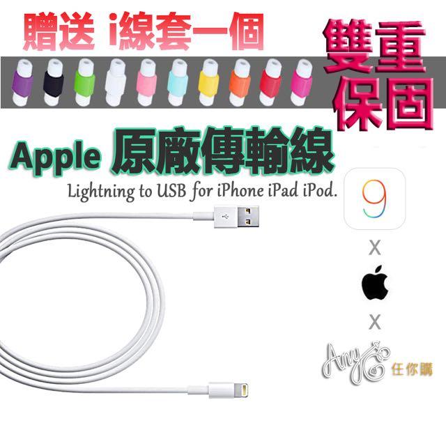 保固1.5年 保證原廠 iPhone 原廠充電線 Apple 蘋果 iPhone 5 6 6s iPad iPod 傳輸線 送i線套