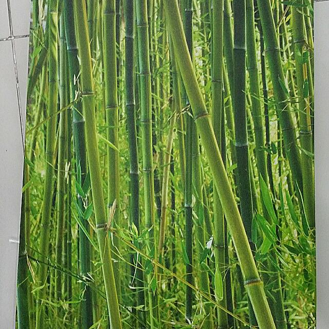 Bamboo Painting X 2