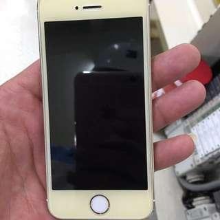 iPhone 5s 金色 32G