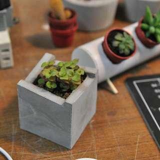水泥階梯全手工盆栽 桌上小飾品