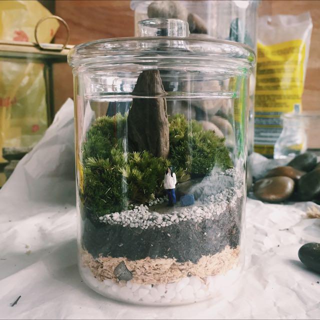 Mini Moss Terrarium With Figurine For Sale Gardening On Carousell