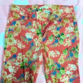 Pazzo花漾💐窄版長褲